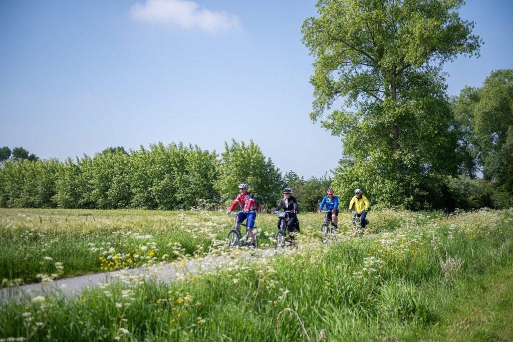 Cycling in the Belgian countryside